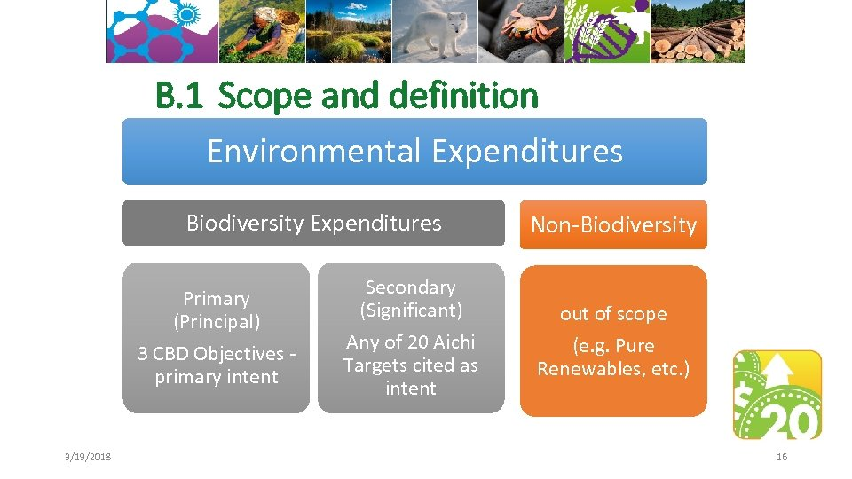 B. 1 Scope and definition Environmental Expenditures Biodiversity Expenditures Primary (Principal) 3 CBD Objectives