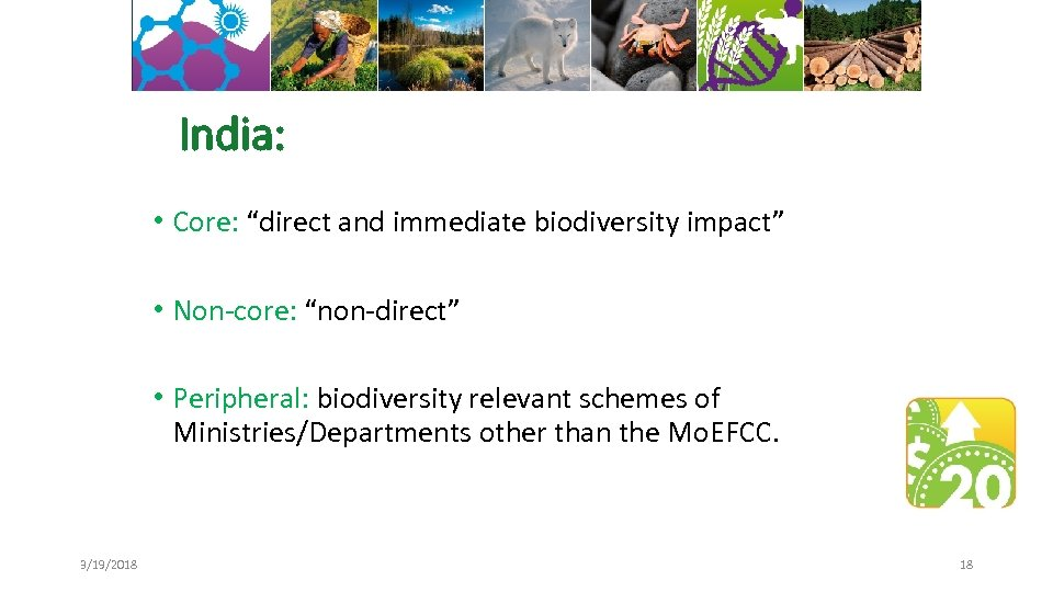 "India: • Core: ""direct and immediate biodiversity impact"" • Non-core: ""non-direct"" • Peripheral: biodiversity"