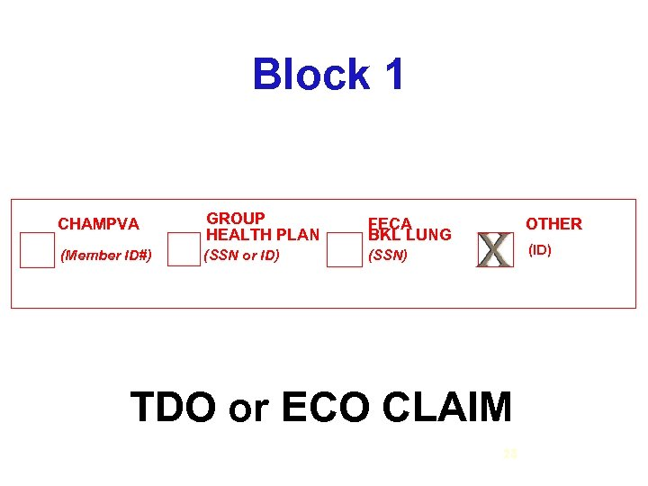 Block 1 CHAMPVA GROUP HEALTH PLAN FECA BKL LUNG (Member ID#) (SSN or ID)