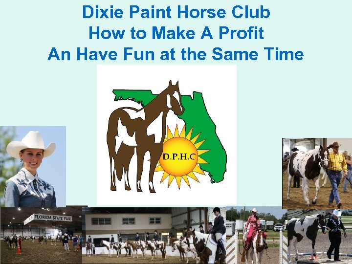 Dixie Paint Horse Club How to Make A Profit An Have Fun at the