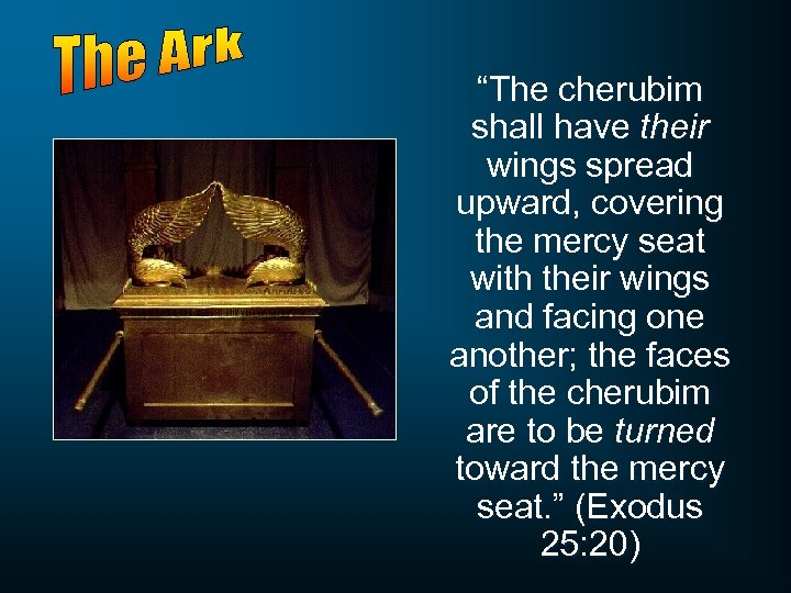 """The cherubim shall have their wings spread upward, covering the mercy seat with their"