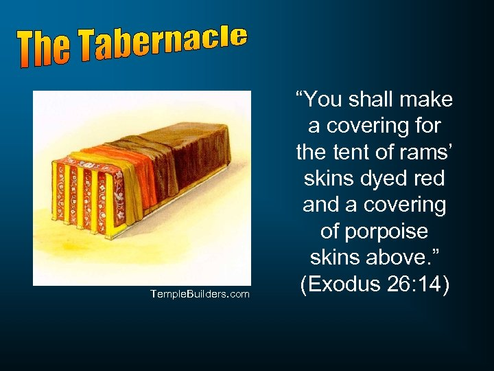 "Temple. Builders. com ""You shall make a covering for the tent of rams' skins"