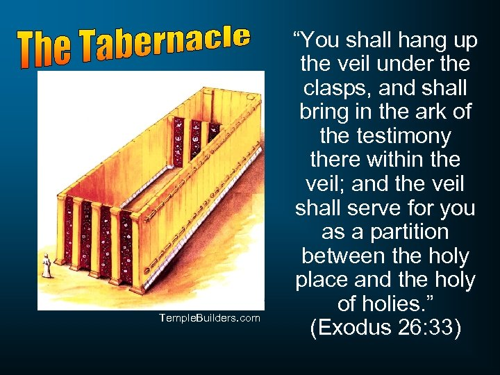 "Temple. Builders. com ""You shall hang up the veil under the clasps, and shall"