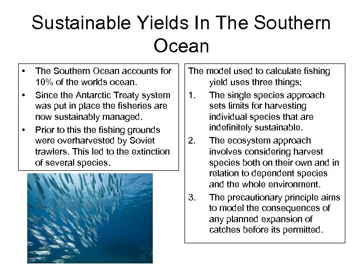 Sustainable Yields In The Southern Ocean • • • The Southern Ocean accounts for