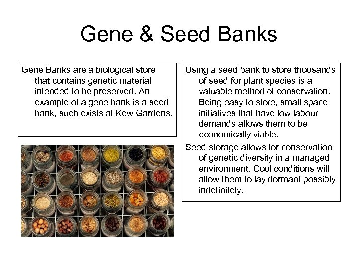 Gene & Seed Banks Gene Banks are a biological store that contains genetic material