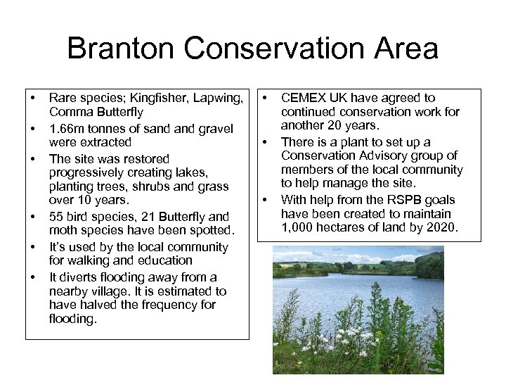 Branton Conservation Area • • • Rare species; Kingfisher, Lapwing, Comma Butterfly 1. 66