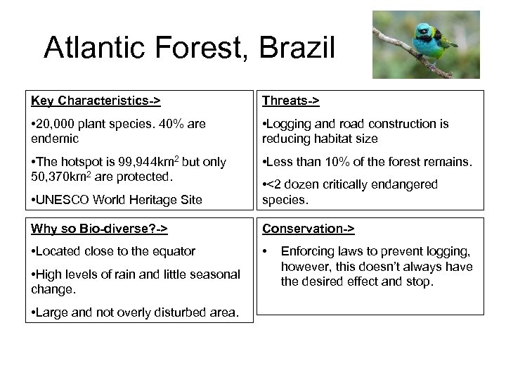 Atlantic Forest, Brazil Key Characteristics-> Threats-> • 20, 000 plant species. 40% are endemic
