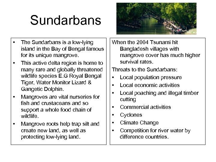 Sundarbans • • The Sundarbans is a low-lying island in the Bay of Bengal