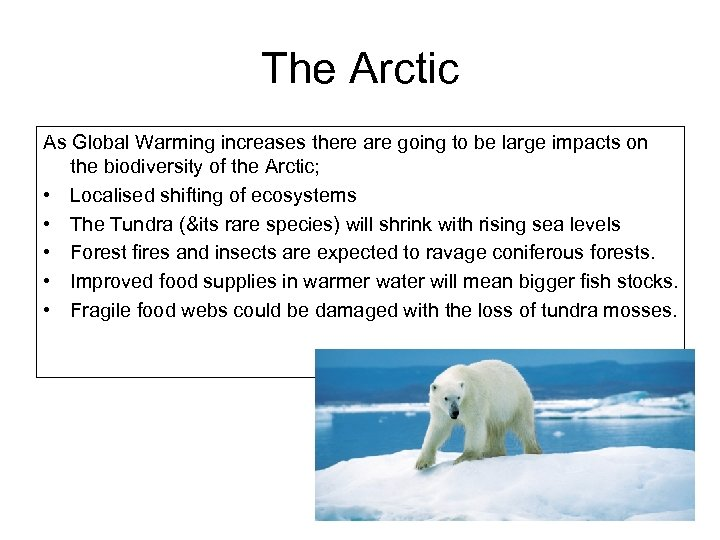 The Arctic As Global Warming increases there are going to be large impacts on