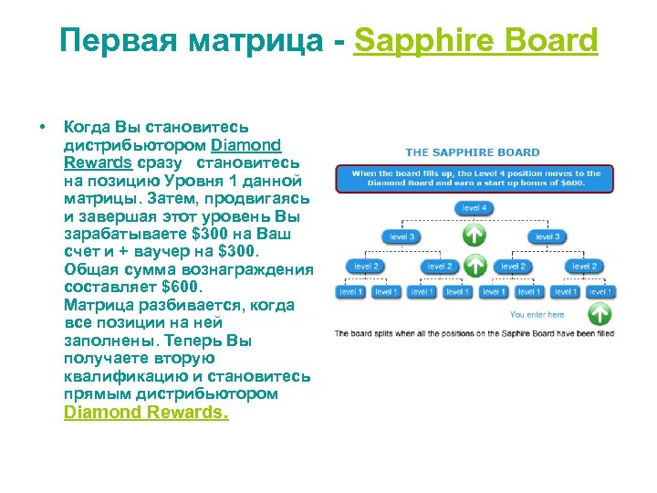 Первая матрица - Sapphire Board • Когда Вы становитесь дистрибьютором Diamond Rewards сразу становитесь