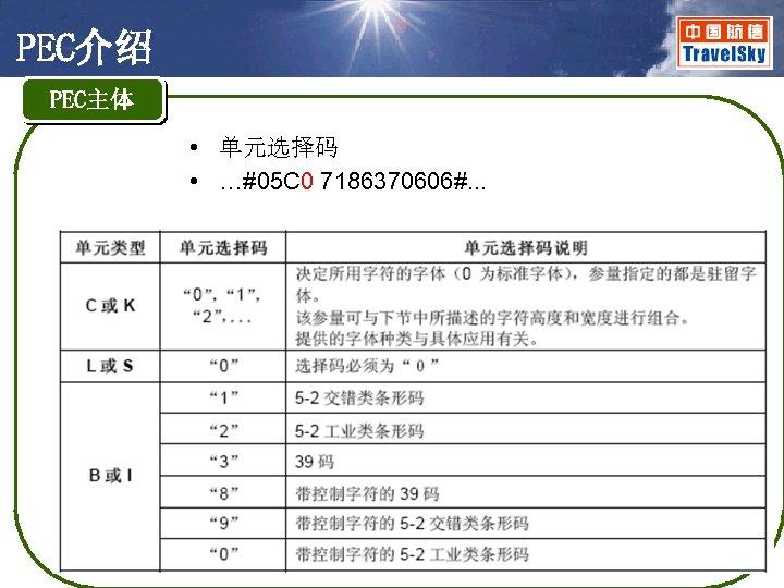 PEC介绍 PEC主体 • 单元选择码 • …#05 C 0 7186370606#. . .