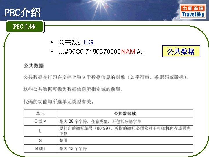 PEC介绍 PEC主体 • 公共数据EG. • …#05 C 0 7186370606 NAM: #. . . 公共数据
