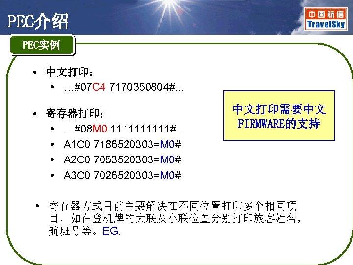 PEC介绍 PEC实例 • 中文打印: • …#07 C 4 7170350804#. . . • 寄存器打印: •