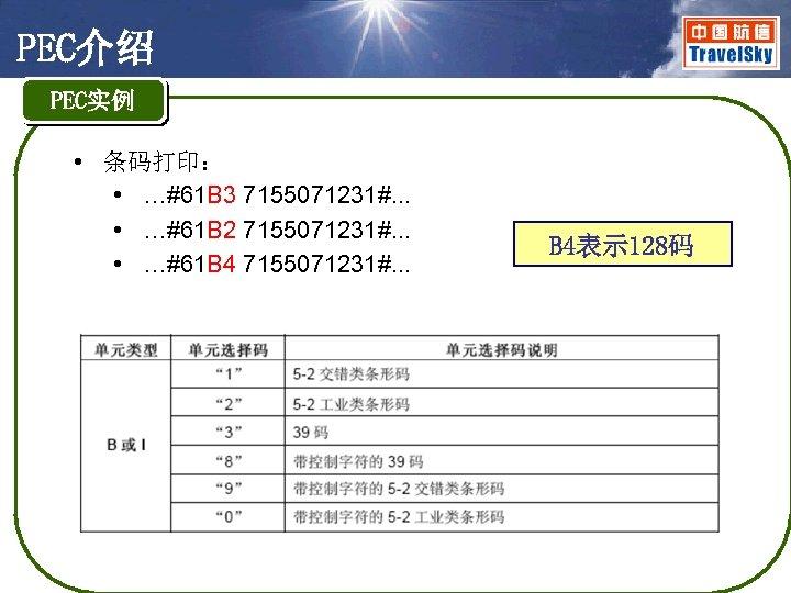 PEC介绍 PEC实例 • 条码打印: • …#61 B 3 7155071231#. . . • …#61 B