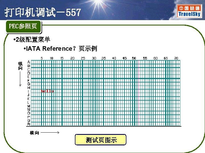 打印机调试-557 PEC参照页 • 2级配置菜单 • IATA Reference?页示例 测试页图示