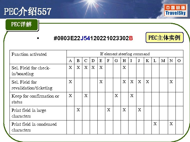 PEC介绍557 PEC详解 • PEC主体实例 #0803 E 22 J 54120221023302 B If element steering command