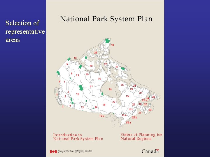 Selection of representative areas