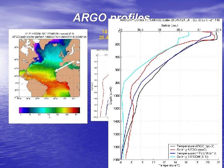 ARGO profiles 14 January 2004 25. 431°N, 21. 163°W 24 January 2004 25. 72°N,