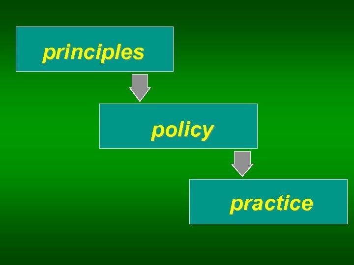 principles policy practice