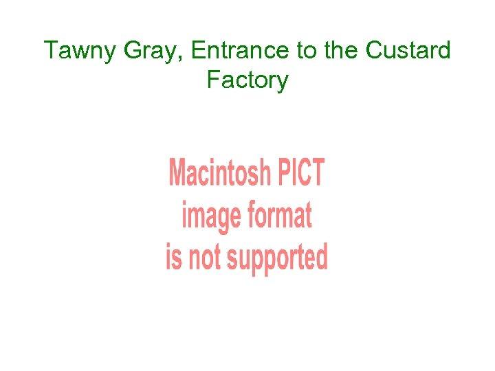 Tawny Gray, Entrance to the Custard Factory