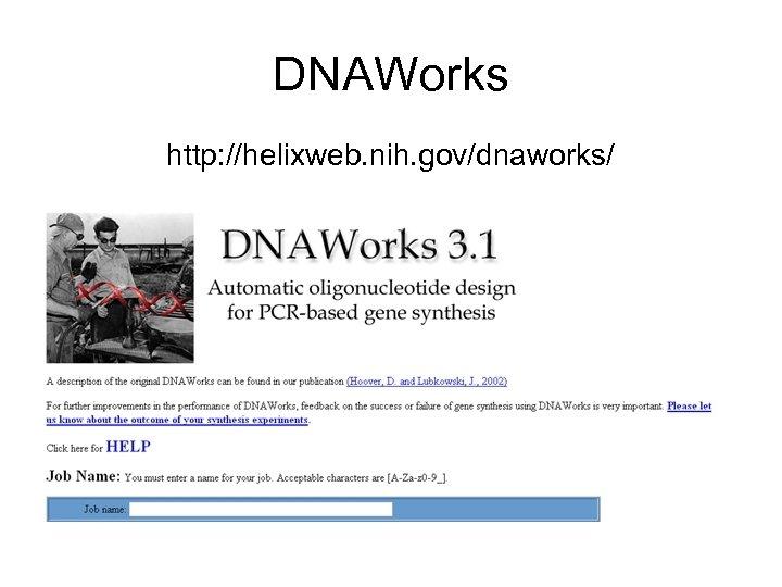 DNAWorks http: //helixweb. nih. gov/dnaworks/