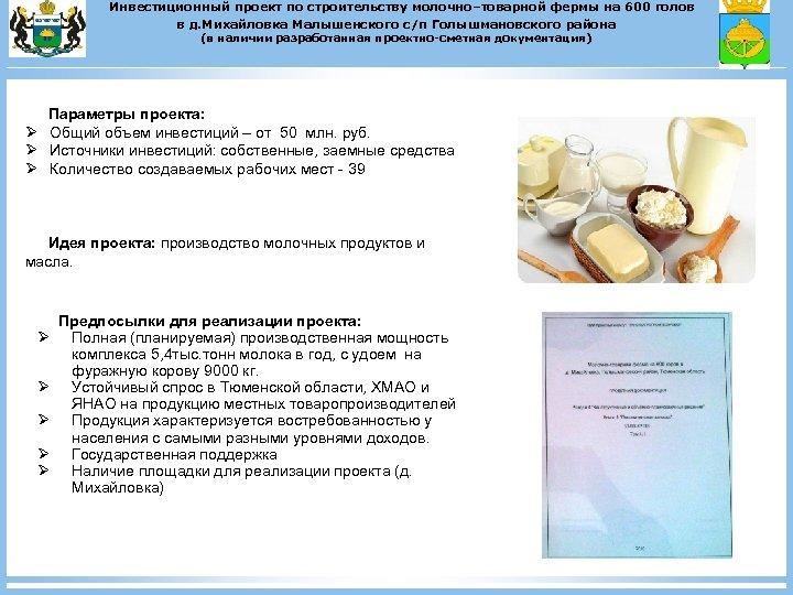 Инвестиционный проект по строительству молочно–товарной фермы на 600 голов в д. Михайловка Малышенского с/п