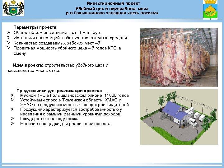 Инвестиционный проект Убойный цех и переработка мяса р. п. Голышманово западная часть поселка Ø