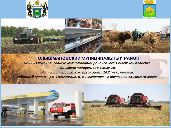 ГОЛЫШМАНОВСКИЙ МУНИЦИПАЛЬНЫЙ РАЙОН Один из крупных сельскохозяйственных районов юга Тюменской области, занимает площадь 408,