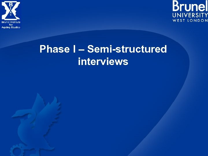Phase I – Semi-structured interviews