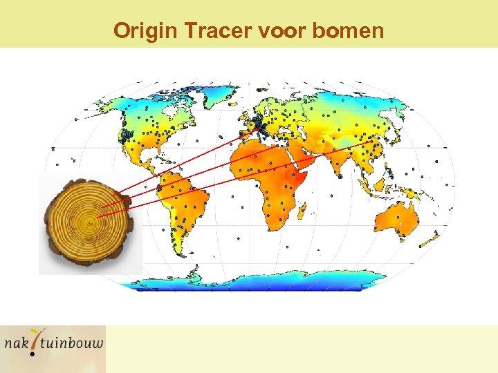 Origin Tracer voor bomen