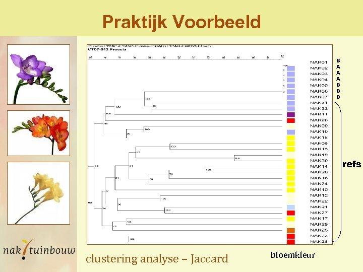 Praktijk Voorbeeld B A A A B B B refs clustering analyse – Jaccard