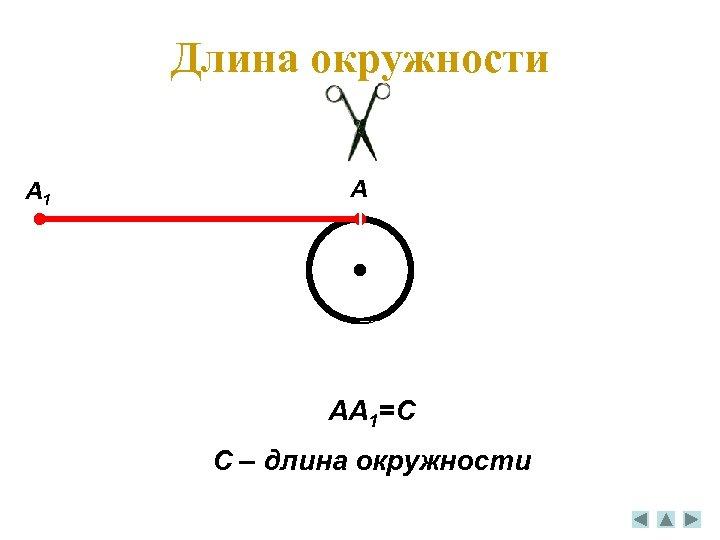 Длина окружности A 1 A AA 1=C C – длина окружности