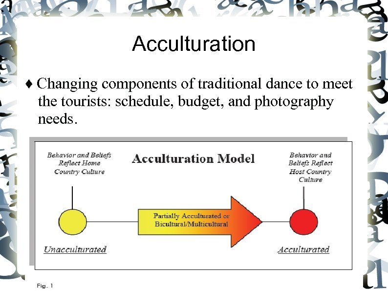 Acculturation ♦ Changing components of traditional dance to meet the tourists: schedule, budget, and