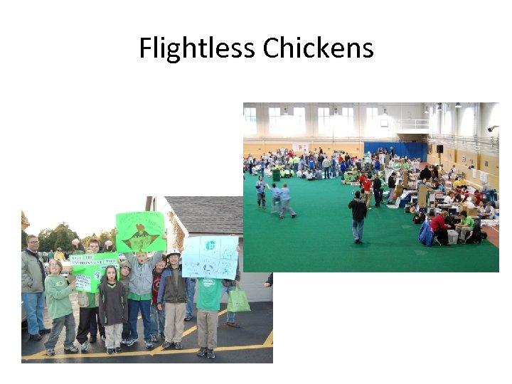Flightless Chickens