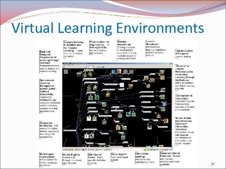 Virtual Learning Environments 30