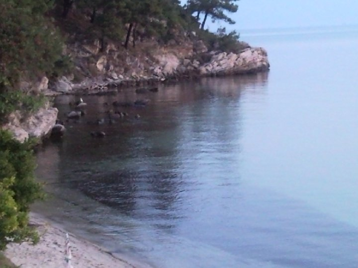 Coastal Zone Definitions