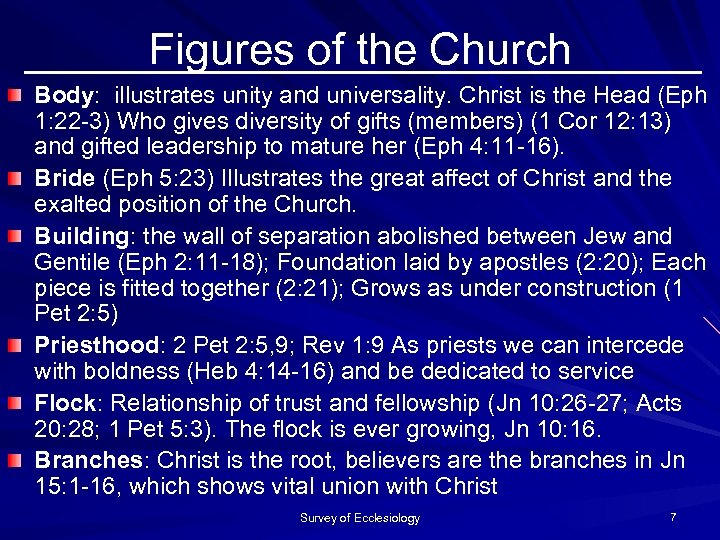 Figures of the Church Body: illustrates unity and universality. Christ is the Head (Eph