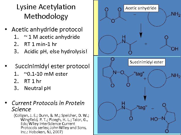 Lysine Acetylation Methodology Acetic anhydride • Acetic anhydride protocol 1. ~ 1 M acetic