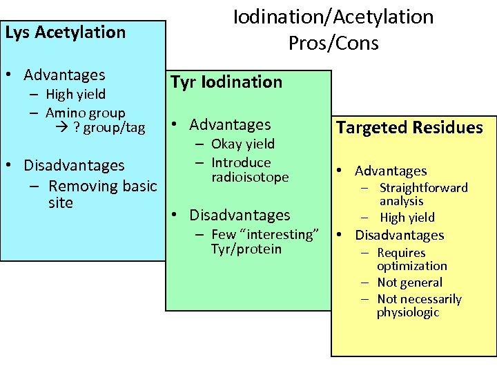 Lys Acetylation • Advantages – High yield – Amino group ? group/tag • Disadvantages