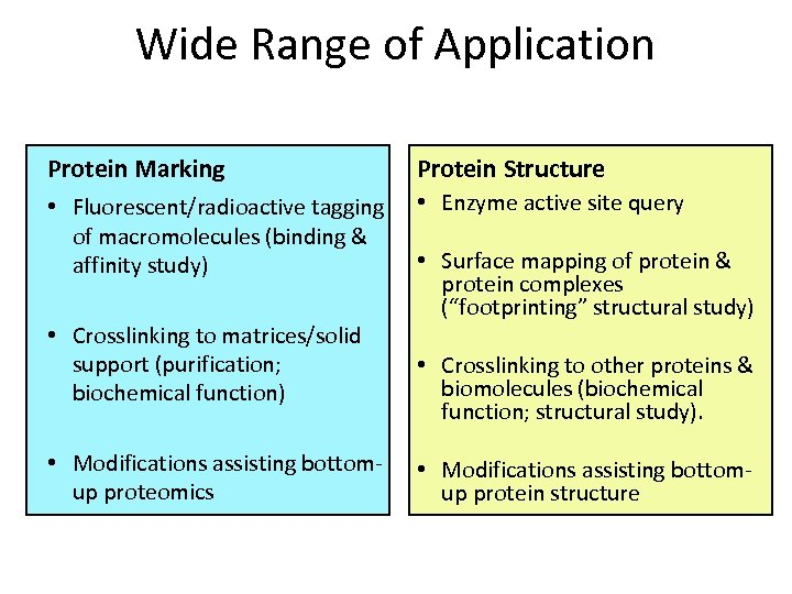 Wide Range of Application Protein Marking Protein Structure • Fluorescent/radioactive tagging of macromolecules (binding