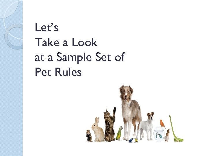 Let's Take a Look at a Sample Set of Pet Rules