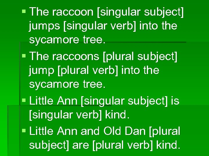 § The raccoon [singular subject] jumps [singular verb] into the sycamore tree. § The