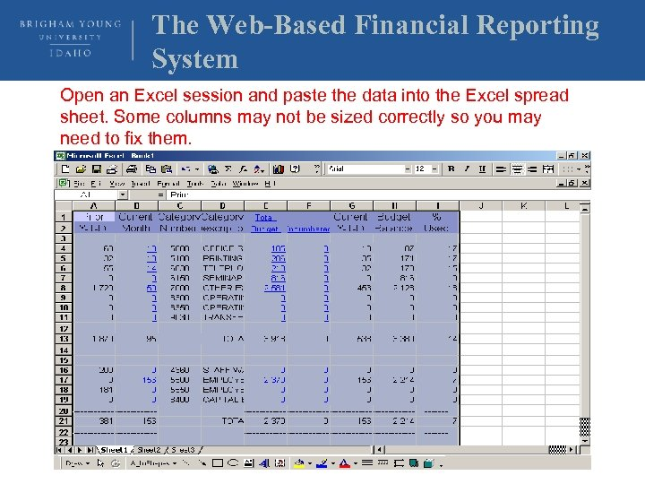 The Web-Based Financial Reporting System Open an Excel session and paste the data into