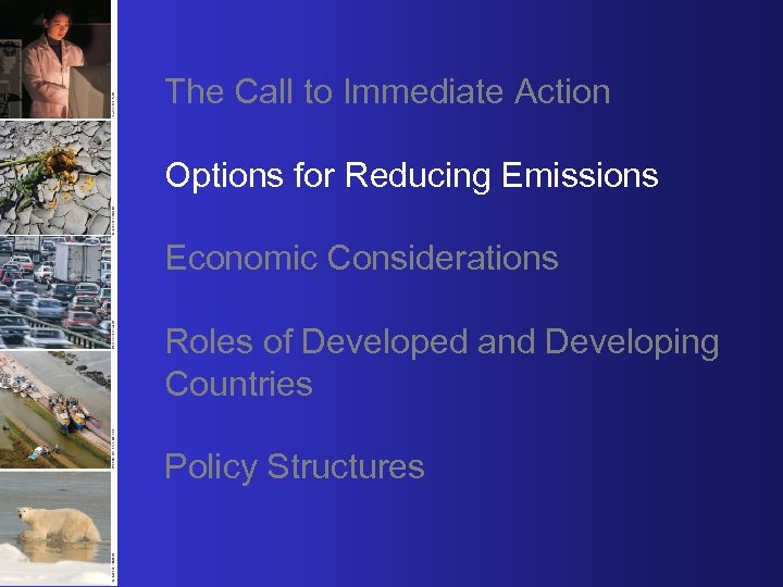 The Call to Immediate Action Options for Reducing Emissions Economic Considerations Roles of Developed