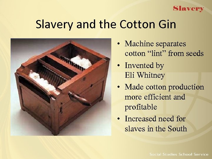"Slavery and the Cotton Gin • Machine separates cotton ""lint"" from seeds • Invented"