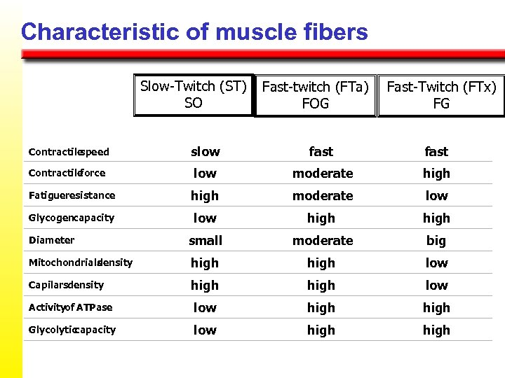 Characteristic of muscle fibers Slow-Twitch (ST) SO Fast-twitch (FTa) FOG Fast-Twitch (FTx) FG Contractile