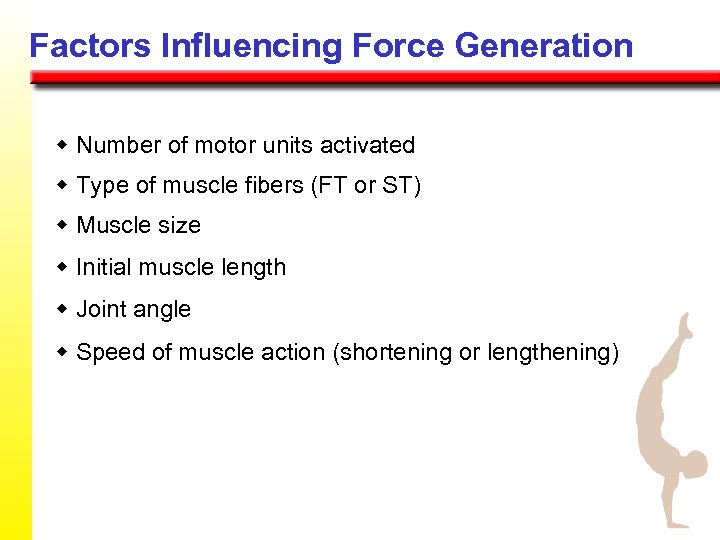 Factors Influencing Force Generation w Number of motor units activated w Type of muscle