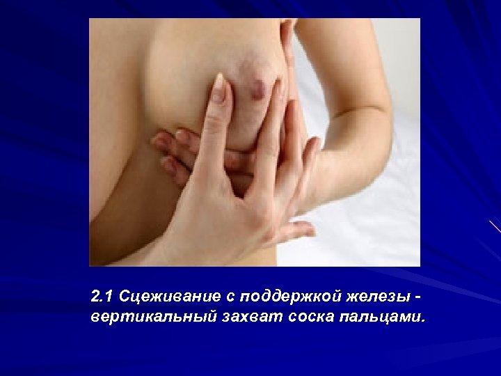2. 1 Сцеживание с поддержкой железы вертикальный захват соска пальцами.