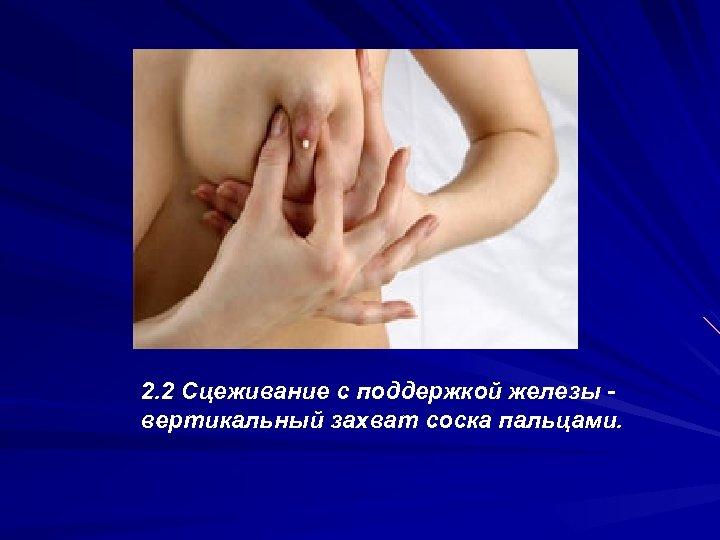 2. 2 Сцеживание с поддержкой железы вертикальный захват соска пальцами.
