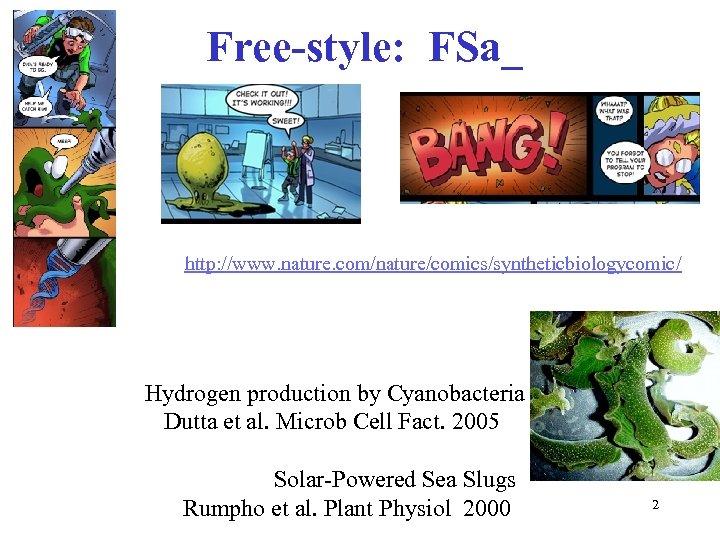 Free-style: FSa_ http: //www. nature. com/nature/comics/syntheticbiologycomic/ Hydrogen production by Cyanobacteria Dutta et al. Microb